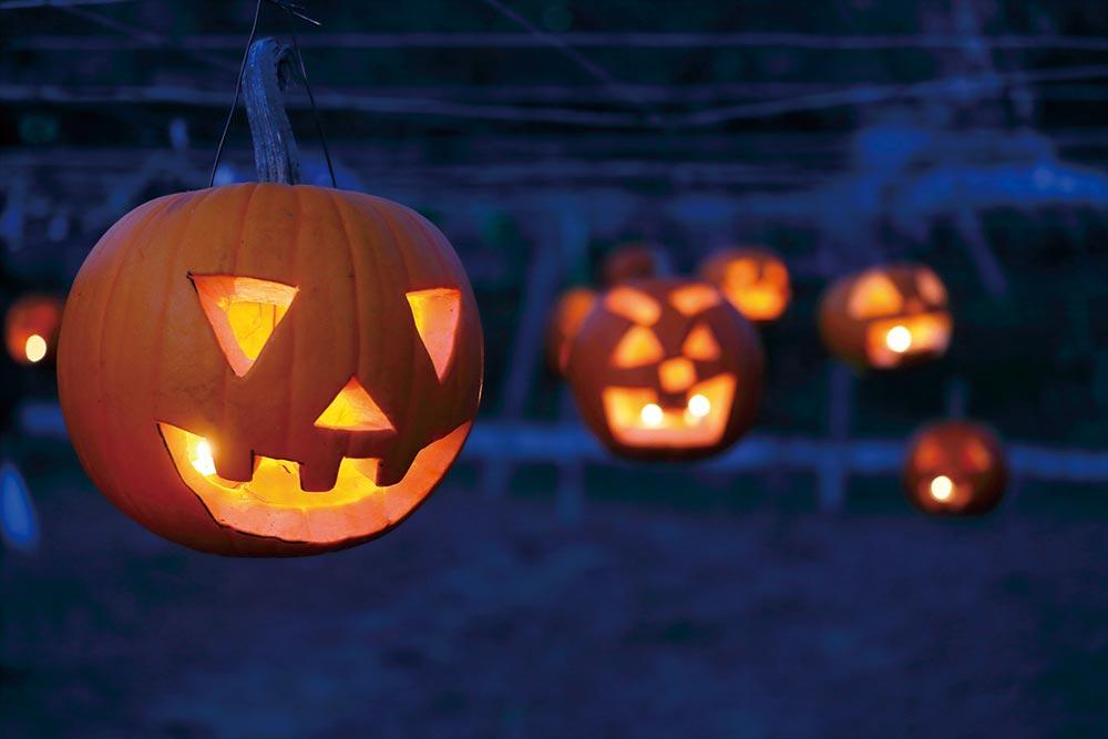 「甲州天空かぼちゃ祭り」開催