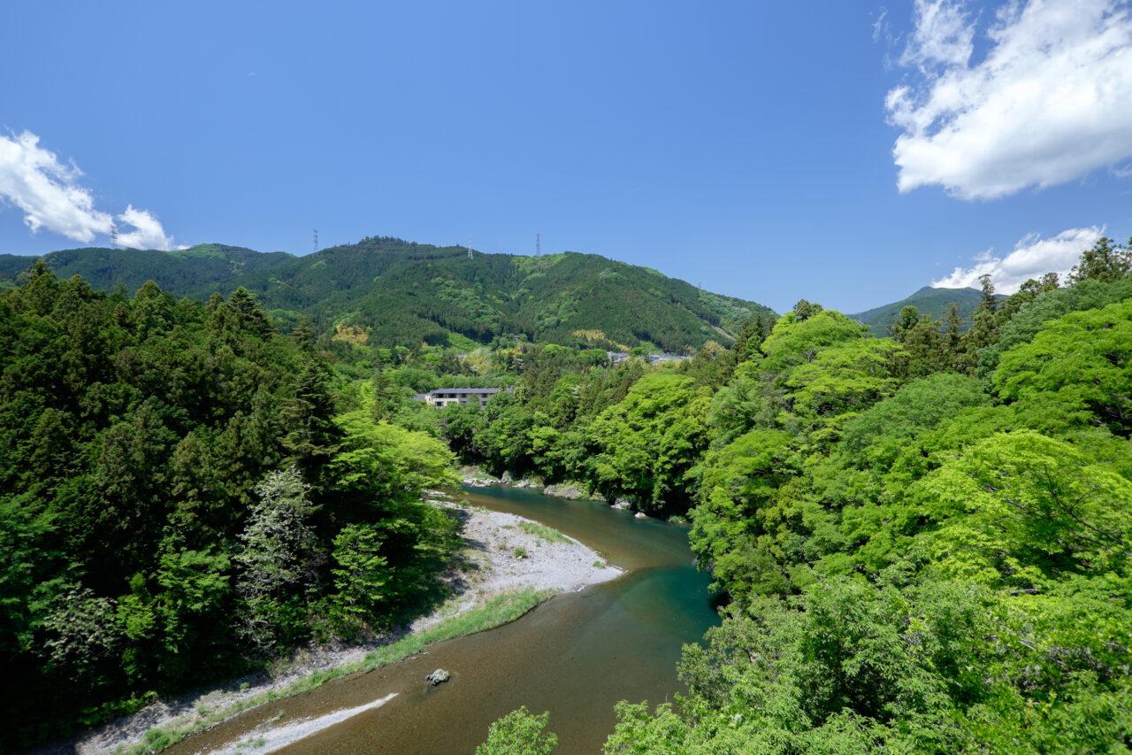 多摩川のほとり