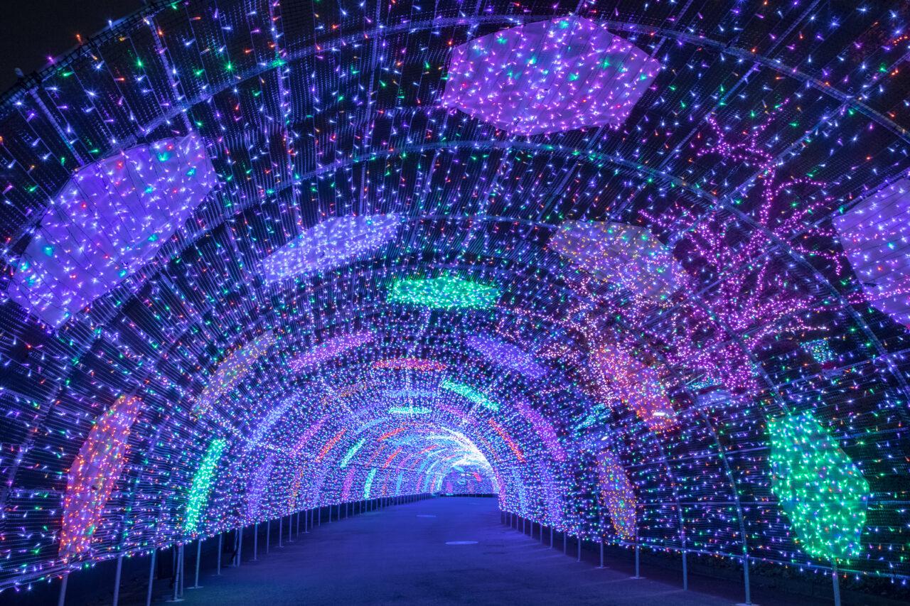 ダイヤモンド・エリアの光のパサージュ
