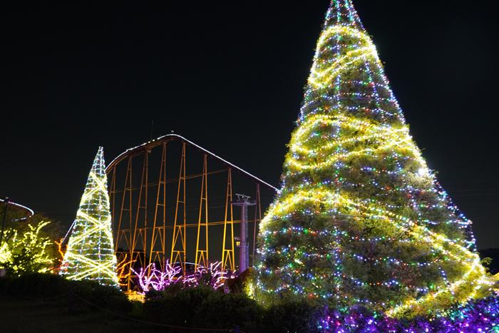 5色に輝くメタセコイヤのツリー