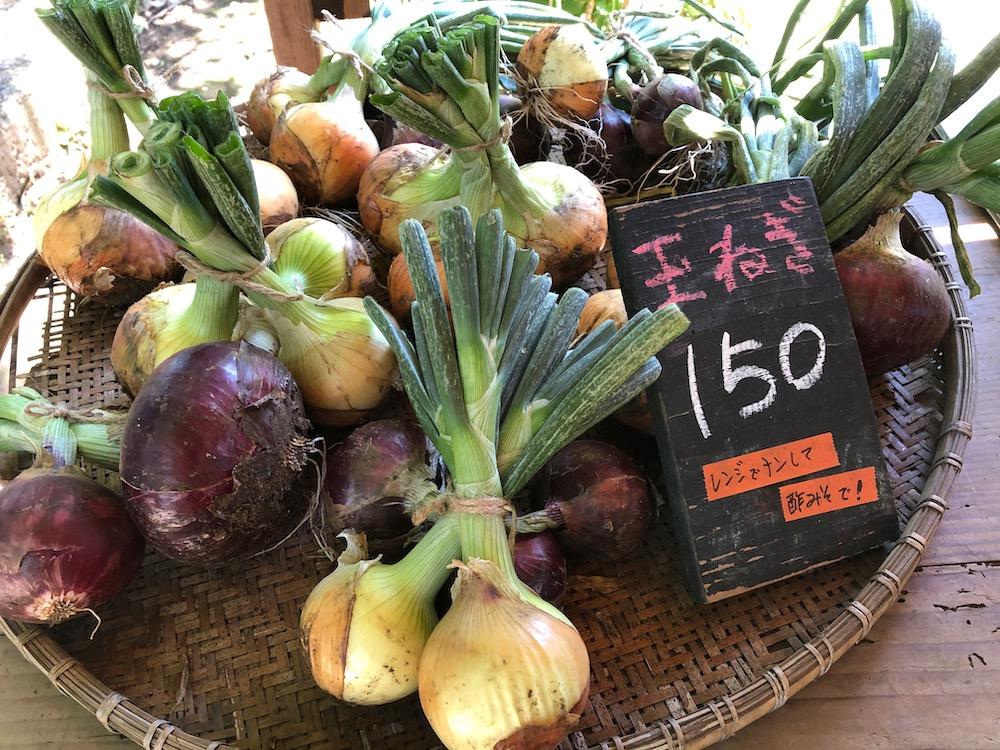 こうやま農園 野菜
