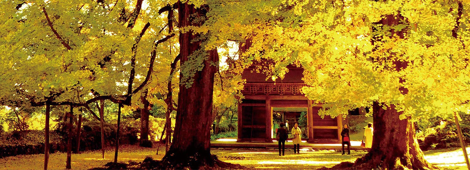 秋色満喫 ちょっと大人の五感旅