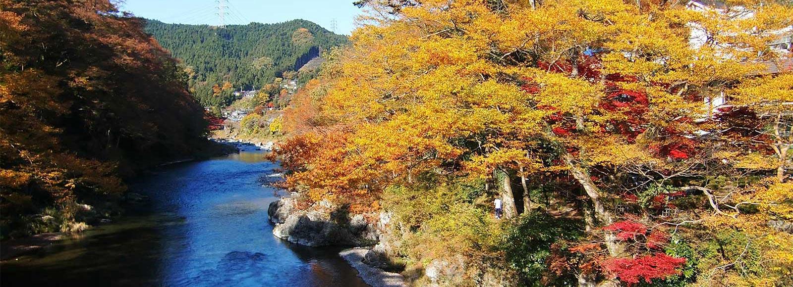 五感で秋を味わう 青梅「御岳渓谷」を歩く